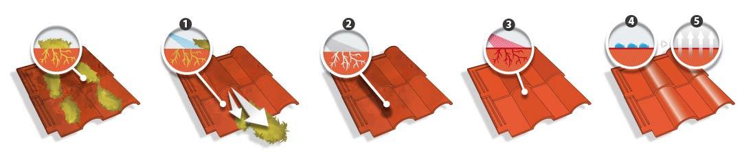 schema renovation toiture
