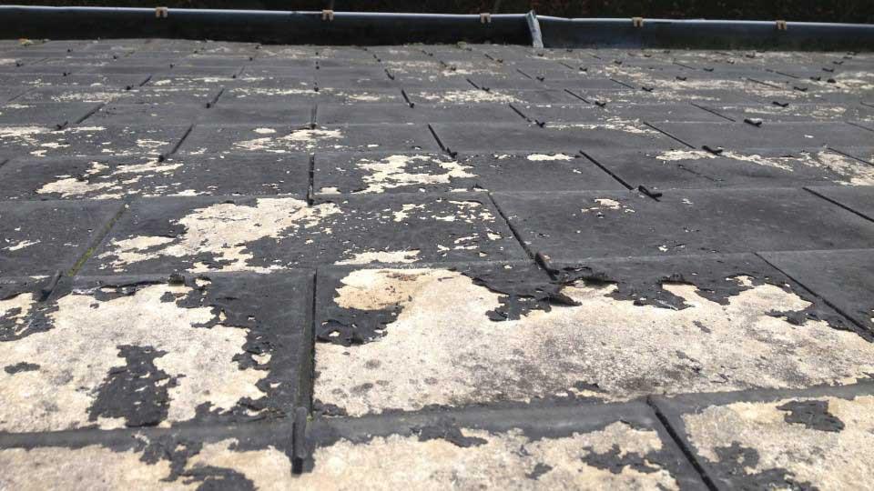 peinture toiture ecaille